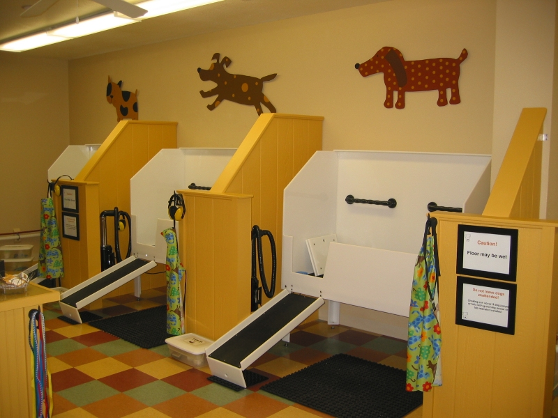 Tubs In Self Serve Dog Wash Facility
